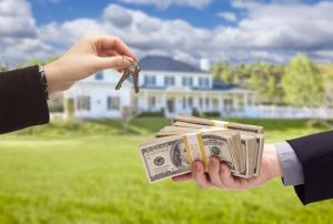 We buy houses in Apollo Beach for excellent market price